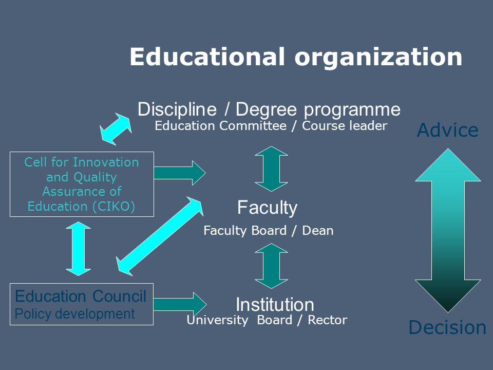 Flanders' structure of higher education