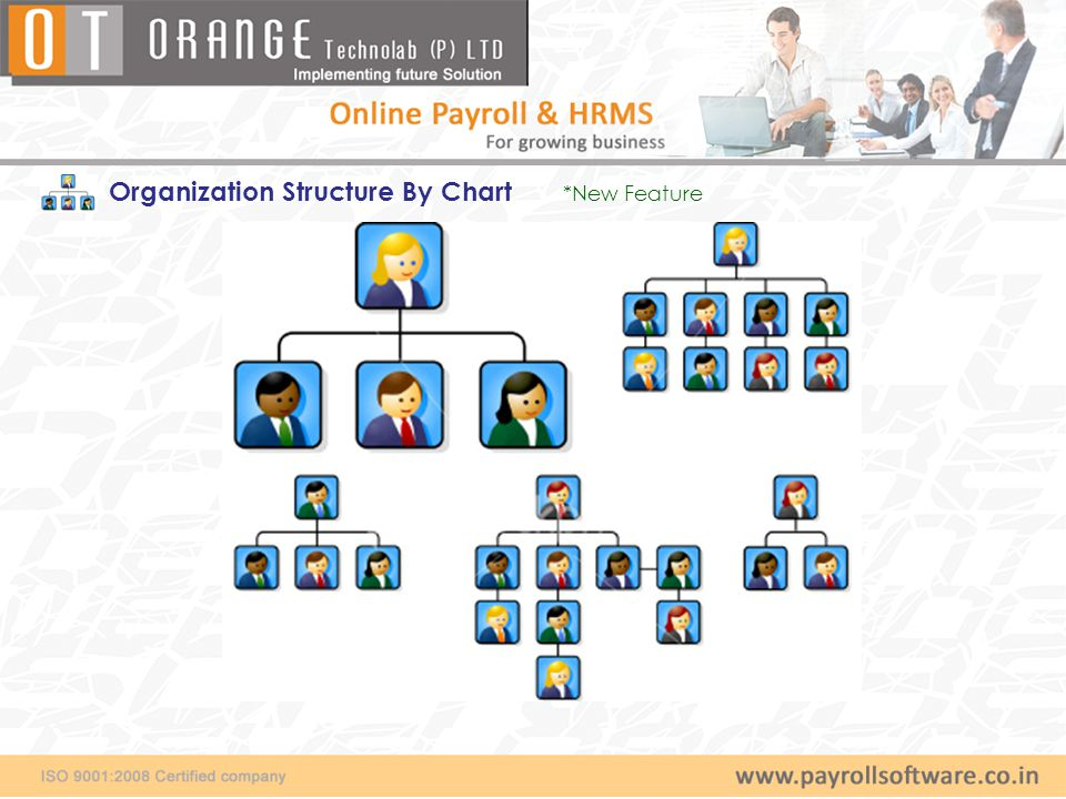 Organization Structure By Chart *New Feature