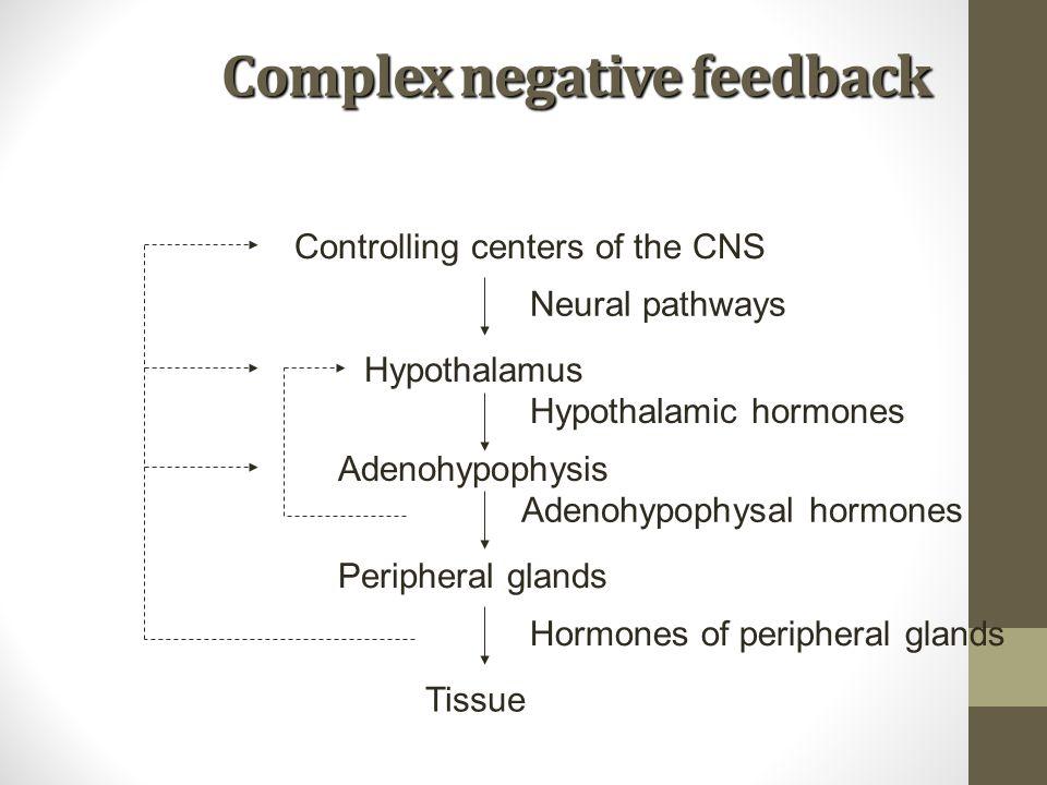 Complex negative feedback