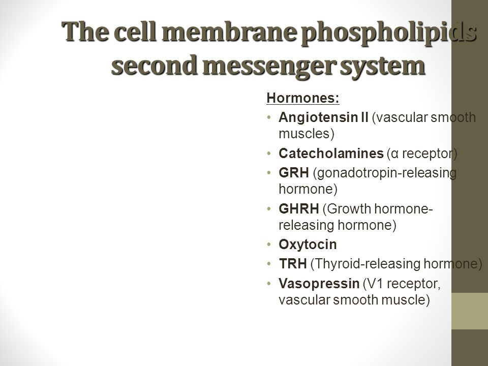 The cell membrane phospholipids second messenger system