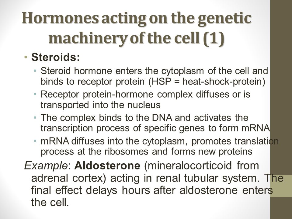 Hormones acting on the genetic machinery of the cell (1)