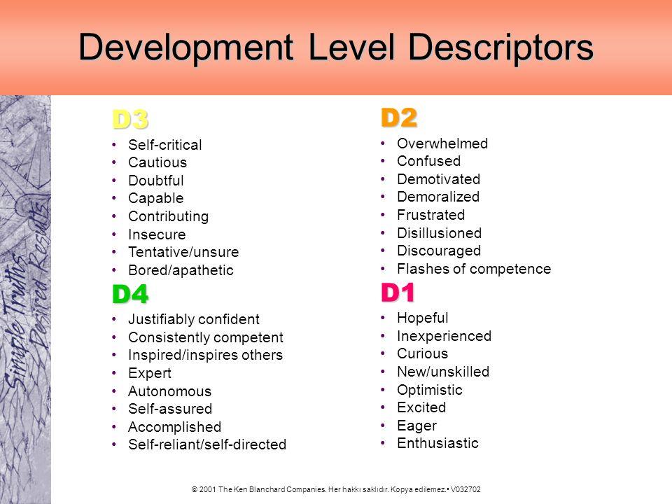 Development Level Descriptors