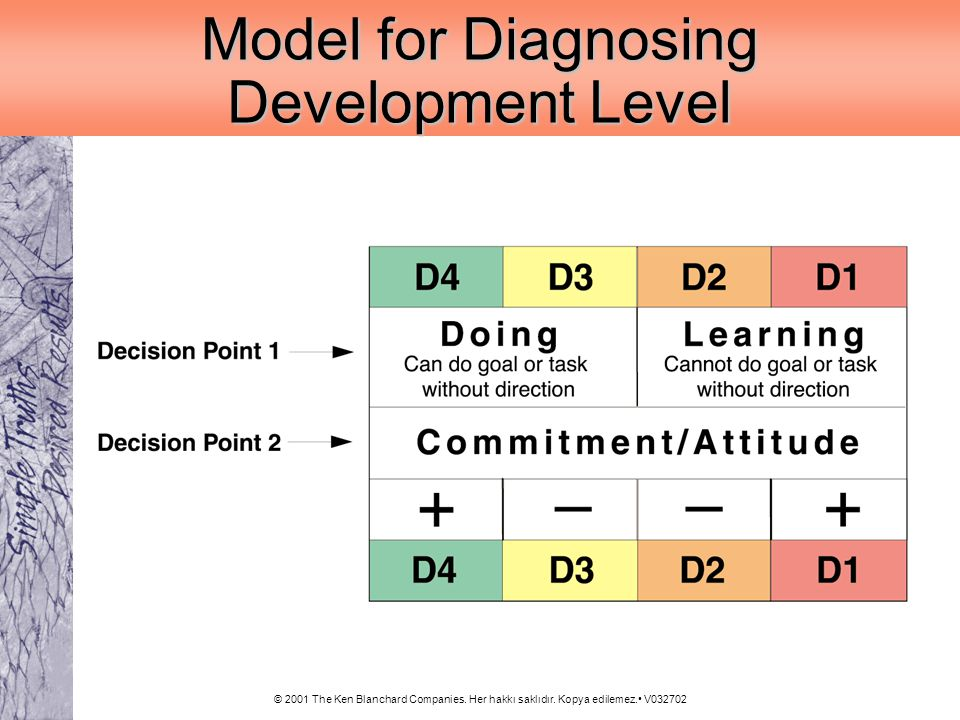 Model for Diagnosing Development Level