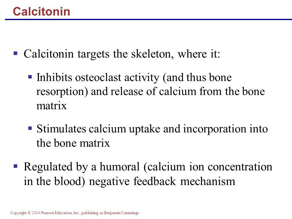 Calcitonin targets the skeleton, where it:
