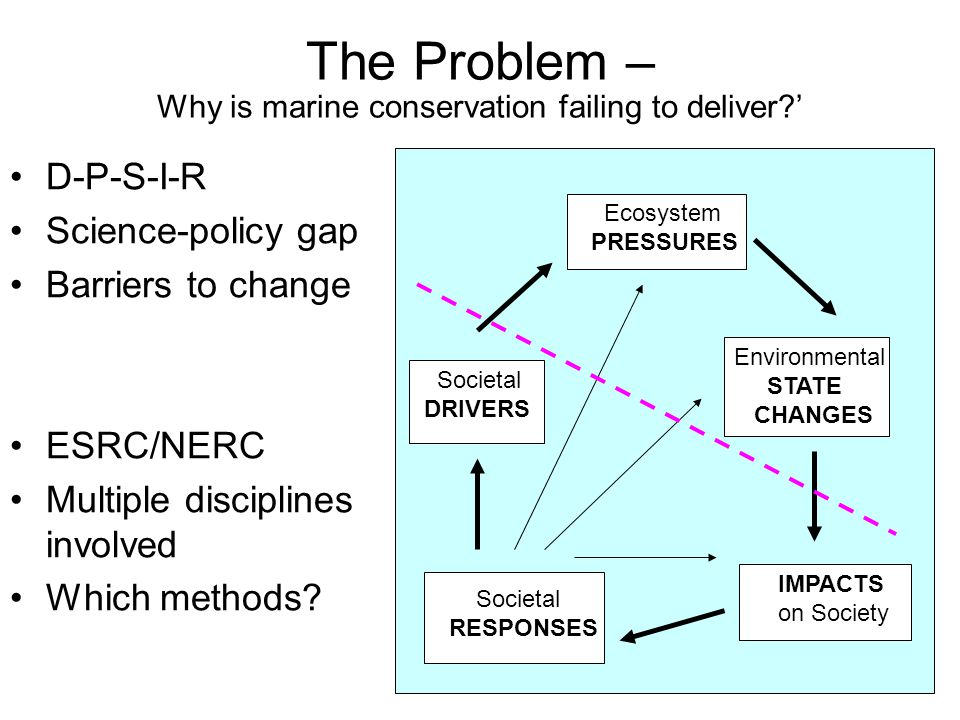 The Problem – Why is marine conservation failing to deliver '