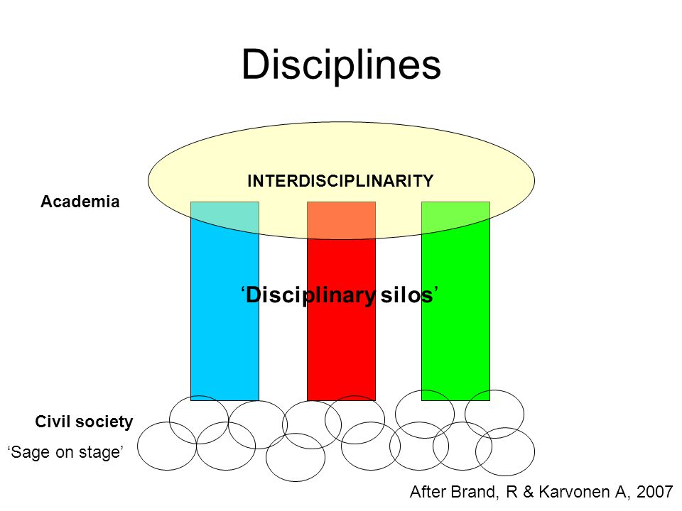 Disciplines 'Disciplinary silos' INTERDISCIPLINARITY Academia