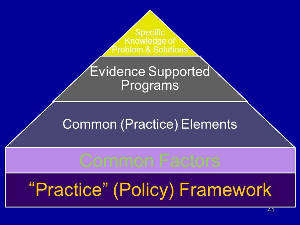 Practice (Policy) Framework