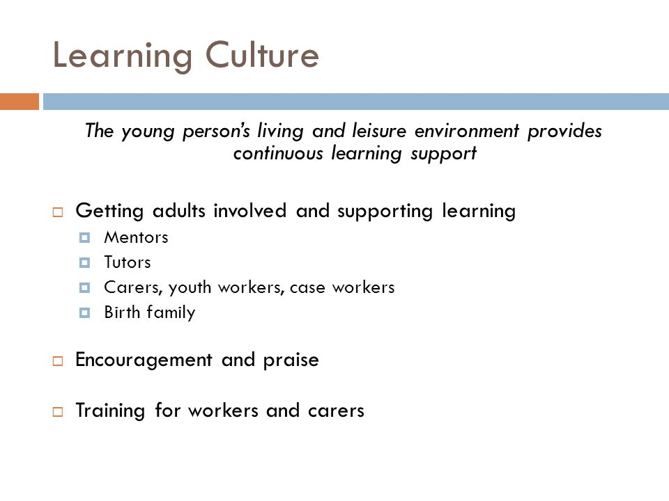 Learning Culture The young person's living and leisure environment provides continuous learning support.