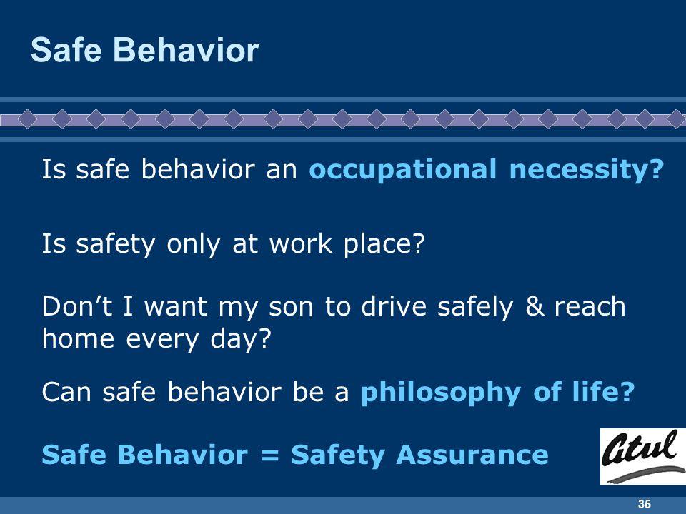 Safe Behavior Is safe behavior an occupational necessity