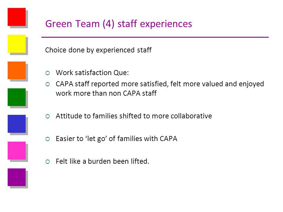 Green Team (4) staff experiences