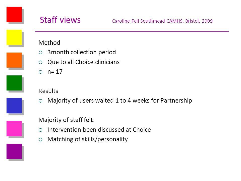 Staff views Caroline Fell Southmead CAMHS, Bristol, 2009