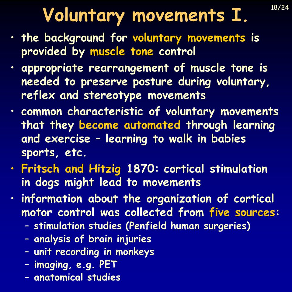 Voluntary movements I. 18/24. the background for voluntary movements is provided by muscle tone control.