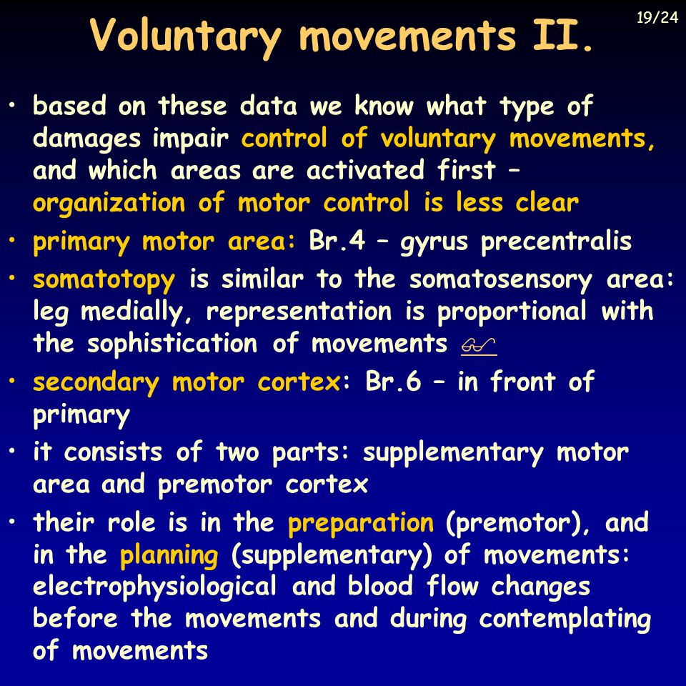 Voluntary movements II.