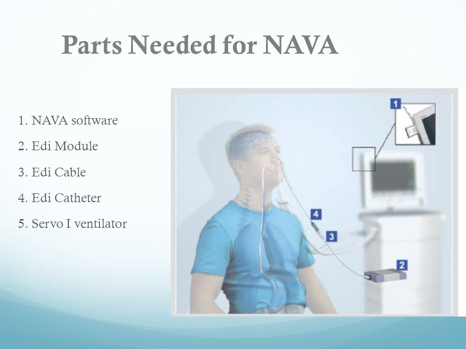 Parts Needed for NAVA 1. NAVA software 2. Edi Module 3. Edi Cable