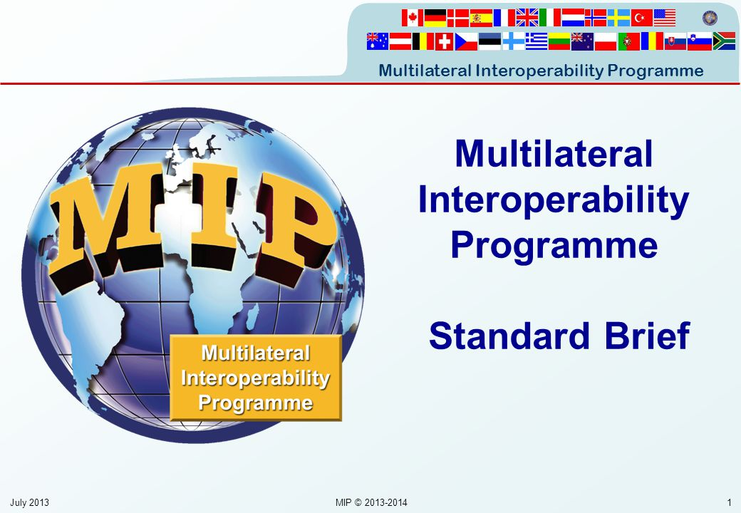 Multilateral Interoperability Programme Standard Brief