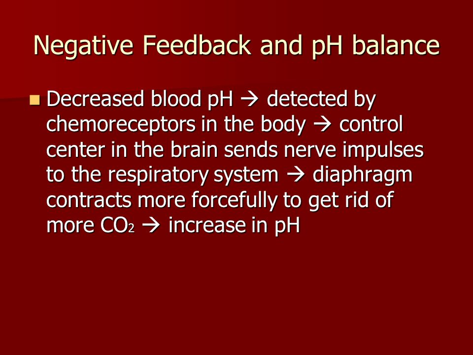 Negative Feedback and pH balance