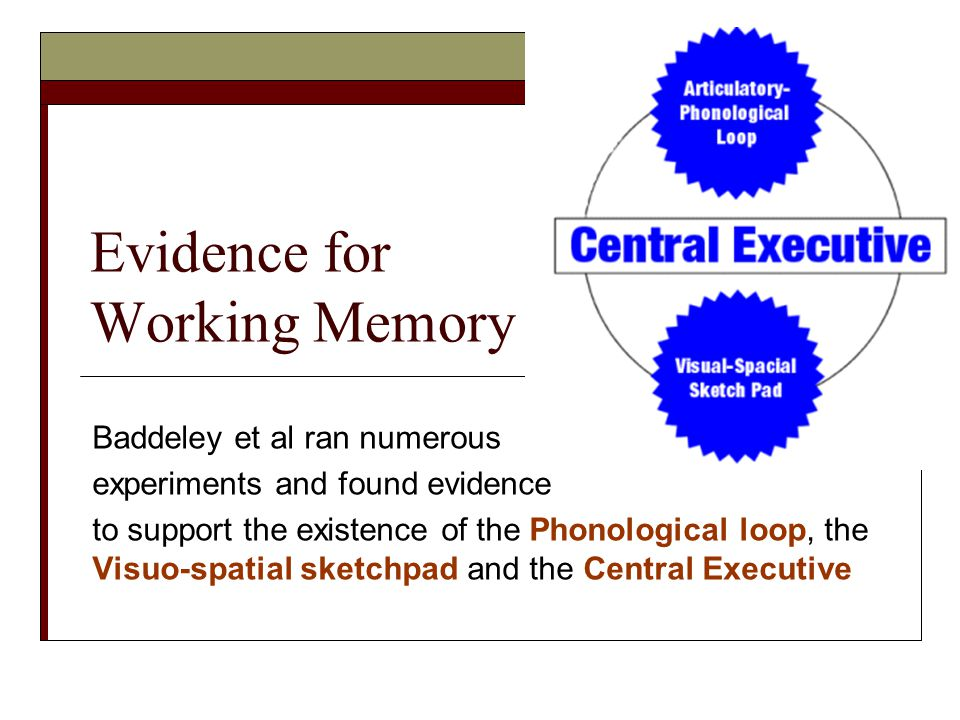 Evidence for Working Memory