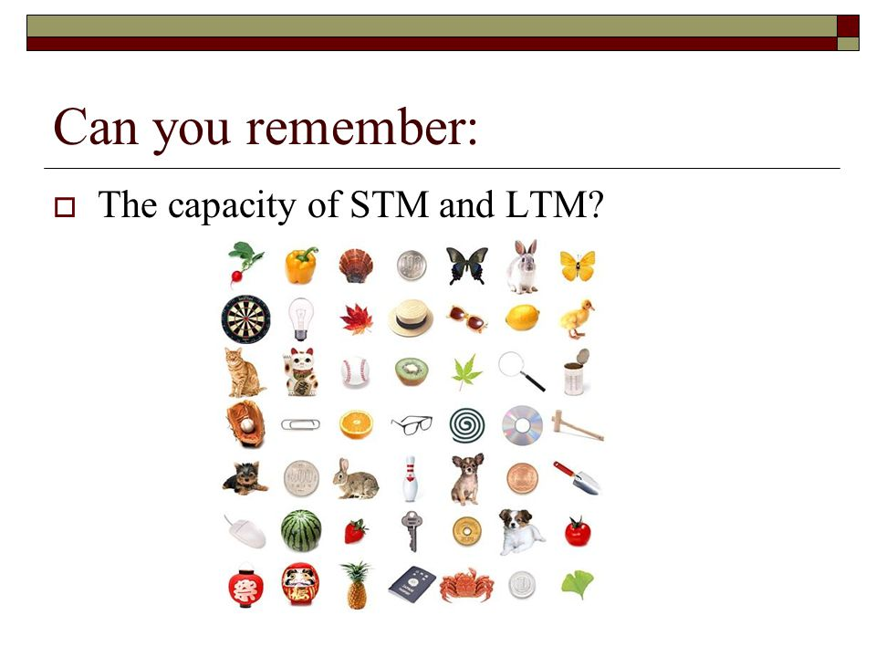 Can you remember: The capacity of STM and LTM