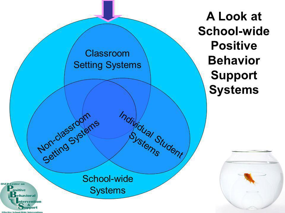 A Look at School-wide Positive Behavior Support Systems