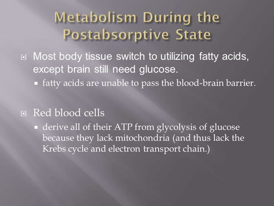 Metabolism During the Postabsorptive State