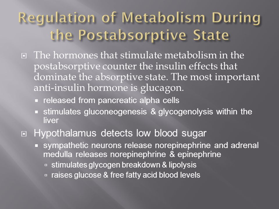 Regulation of Metabolism During the Postabsorptive State
