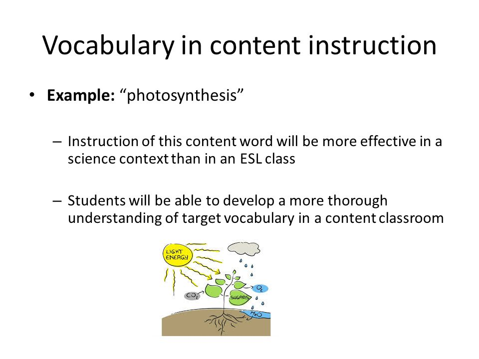 Vocabulary in content instruction