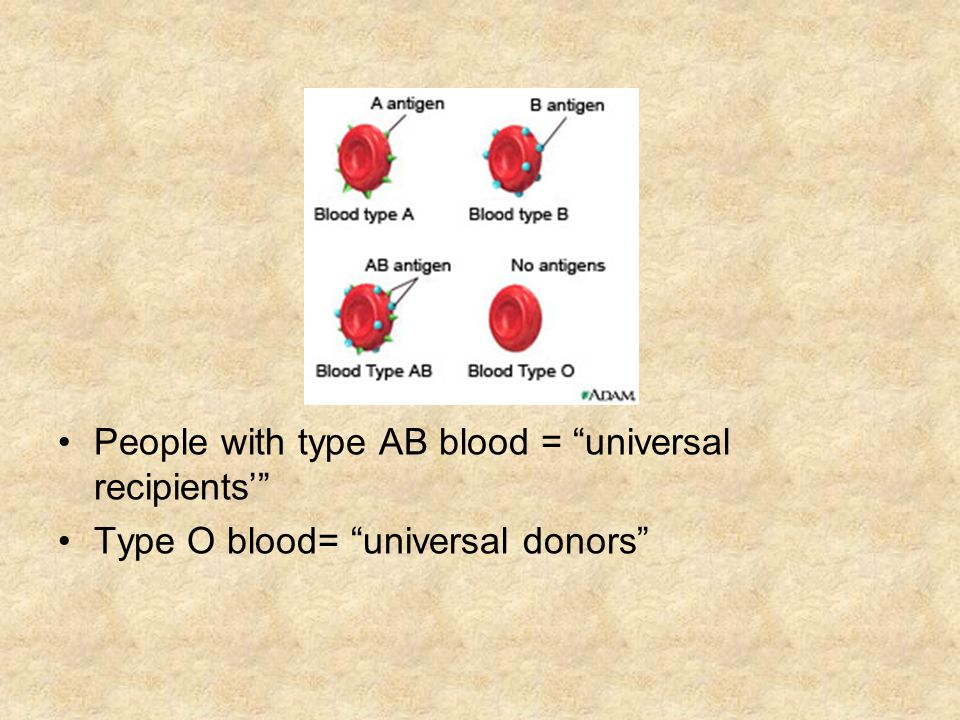 People with type AB blood = universal recipients'