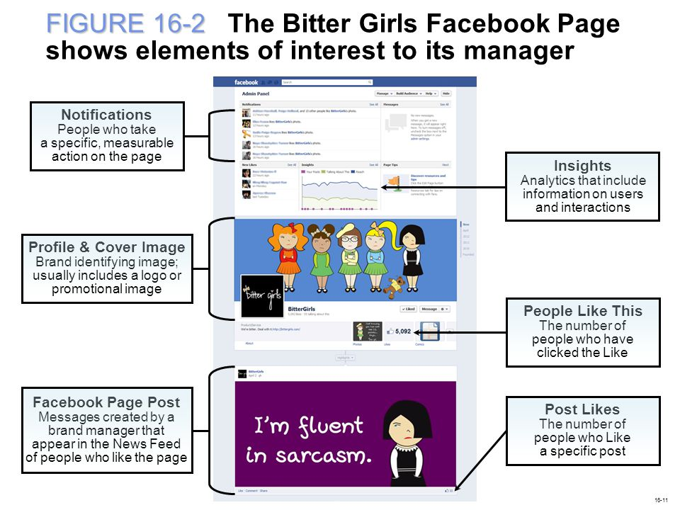 FIGURE 16-2 The Bitter Girls Facebook Page shows elements of interest to its manager