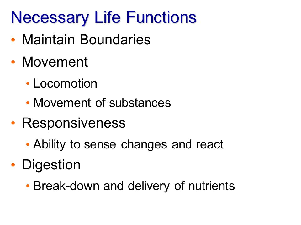 Necessary Life Functions - ppt video online download