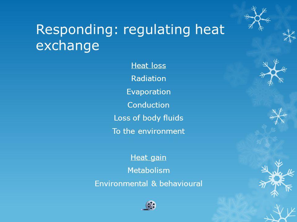 Responding: regulating heat exchange