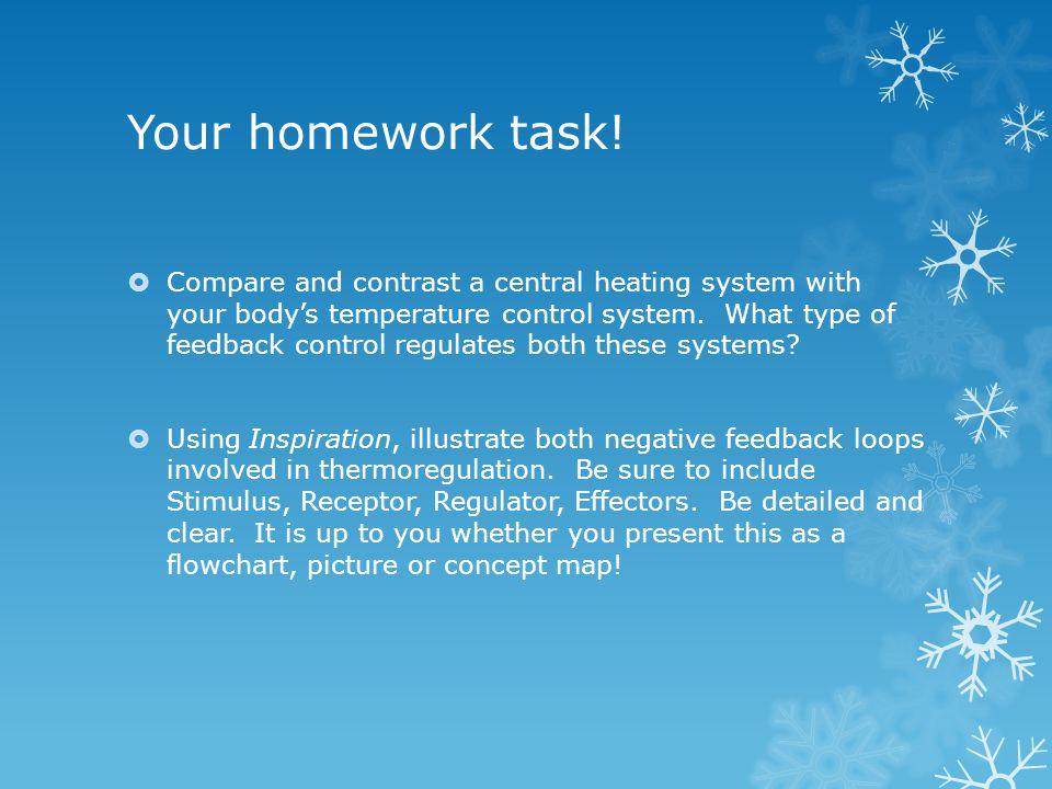 Your homework task!
