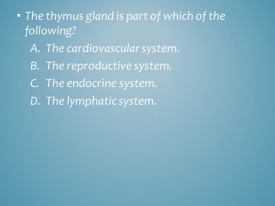 The thymus gland is part of which of the following