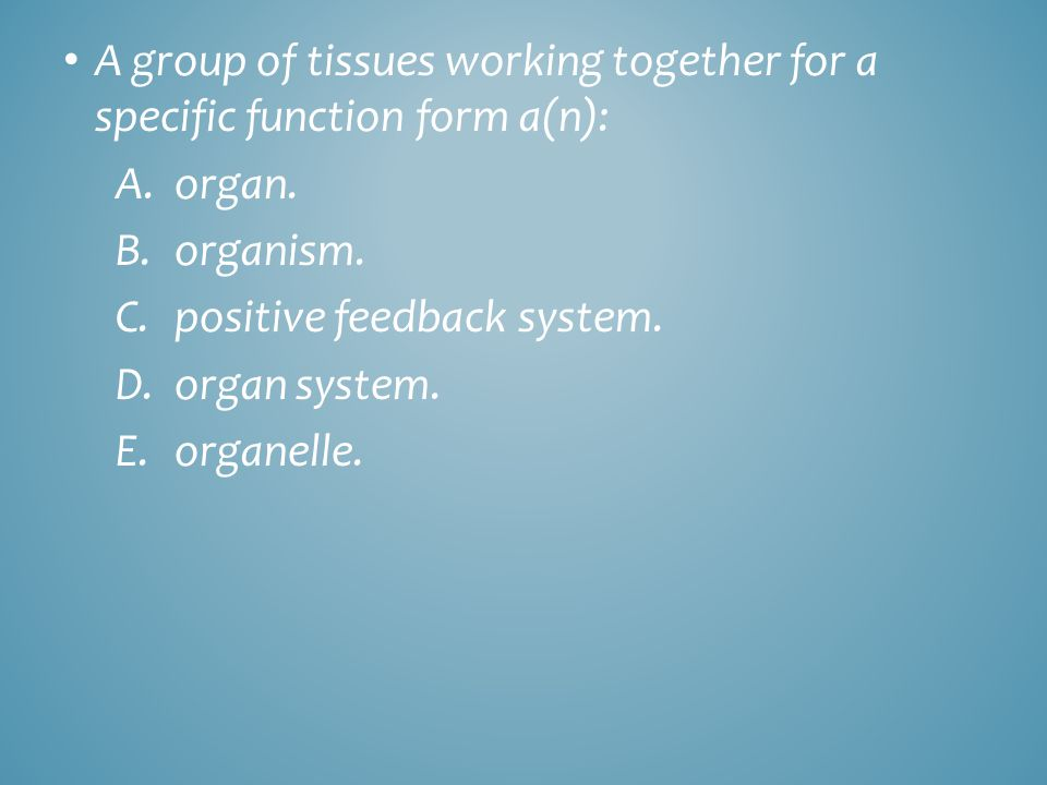 A group of tissues working together for a specific function form a(n):