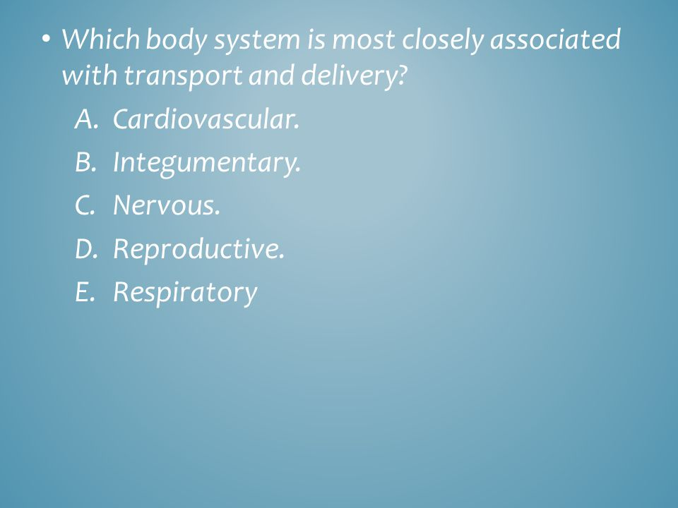Which body system is most closely associated with transport and delivery