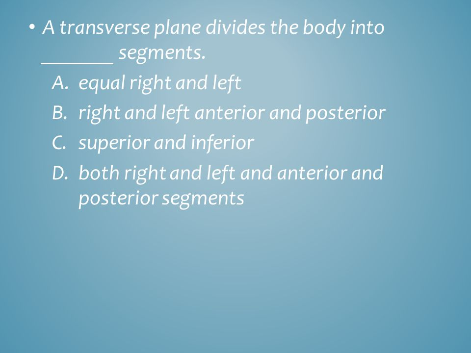 A transverse plane divides the body into _______ segments.