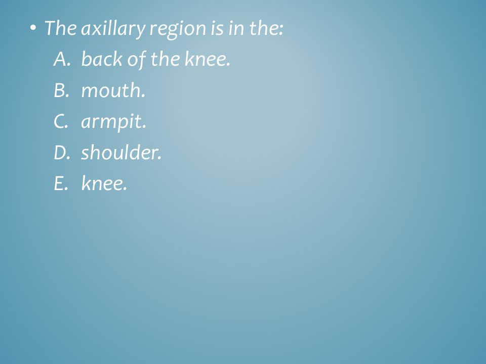 The axillary region is in the: