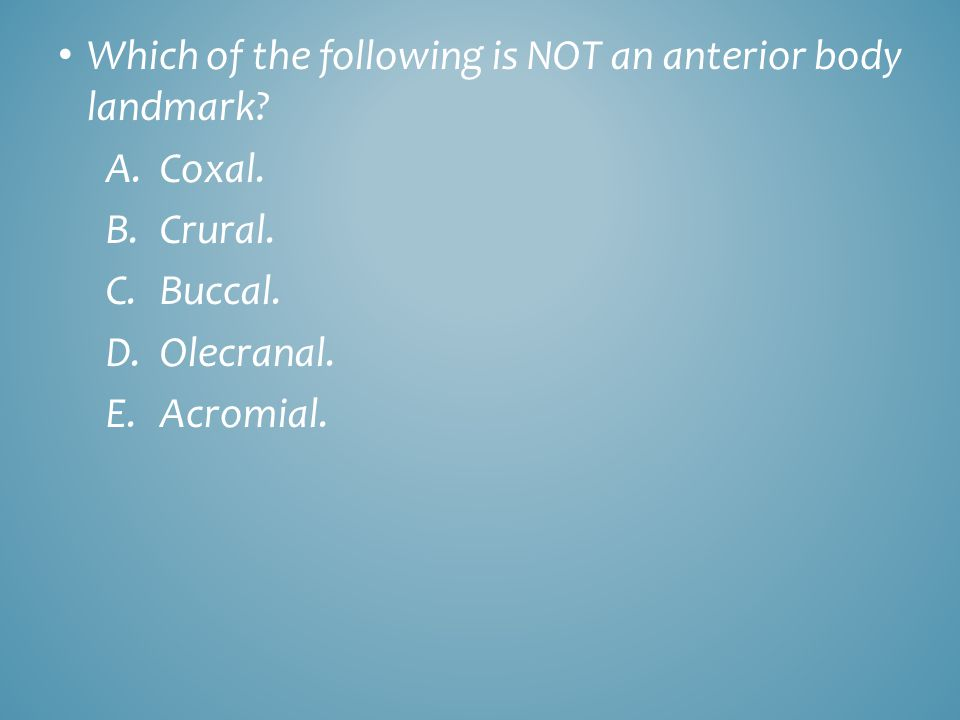 Which of the following is NOT an anterior body landmark