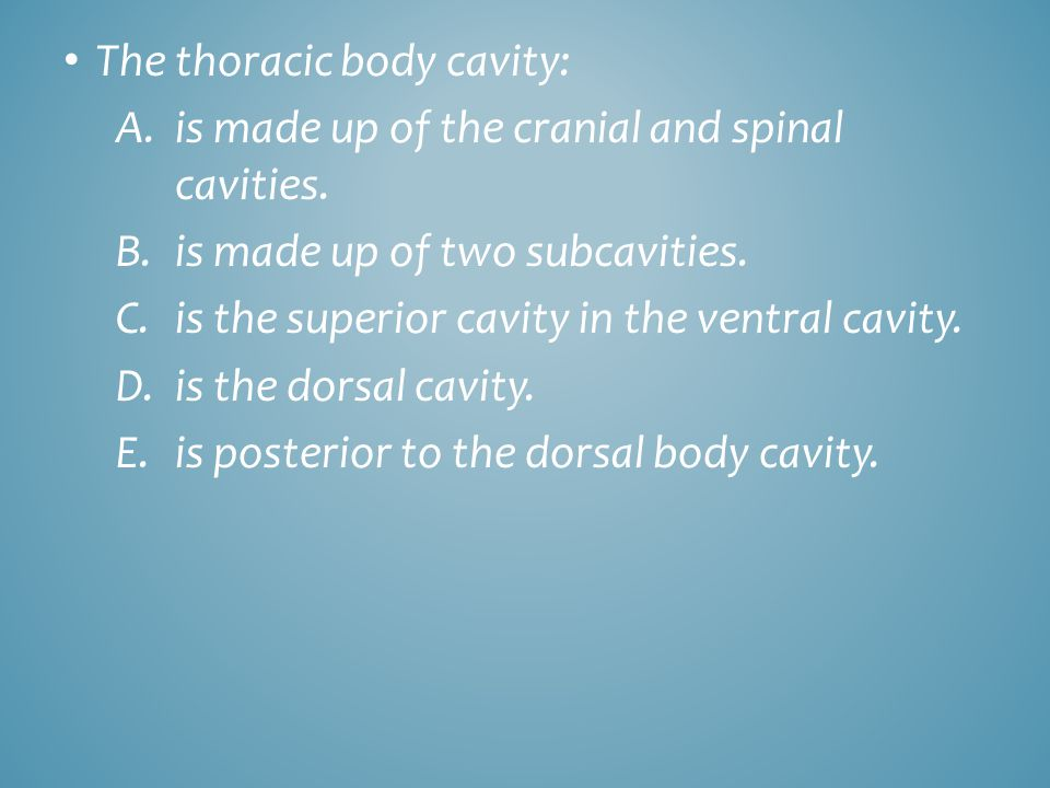 The thoracic body cavity: