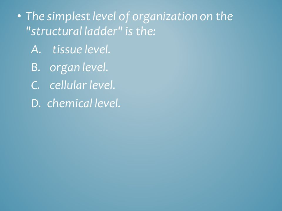 The simplest level of organization on the structural ladder is the: