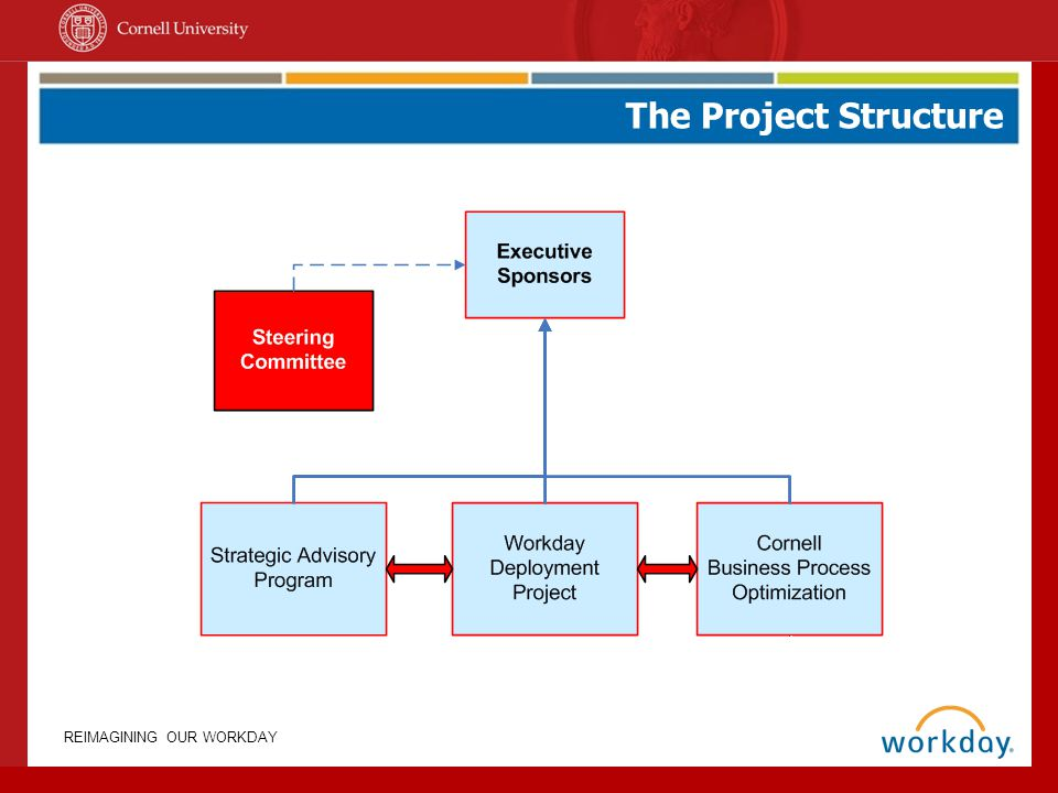 The Project Structure Why does Cornell want to go with this program since only one other institution of higher learning currently uses it