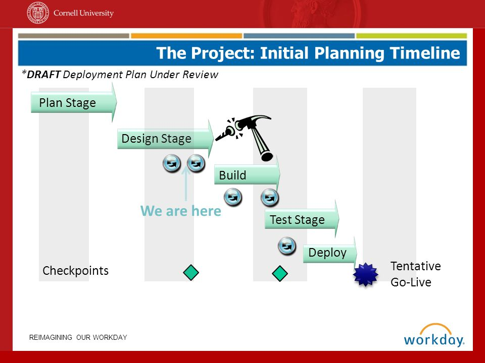 The Project: Initial Planning Timeline