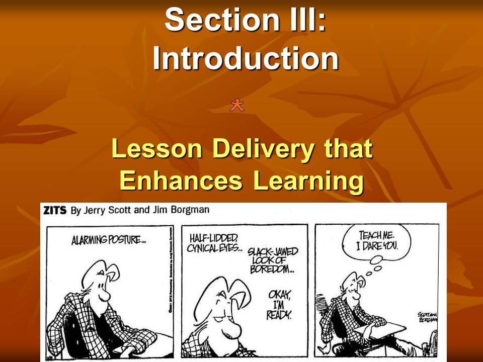 Section III: Introduction