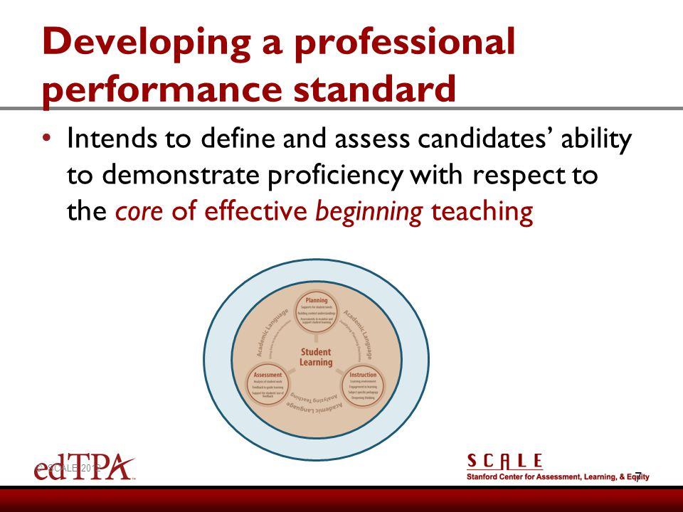 Developing a professional performance standard
