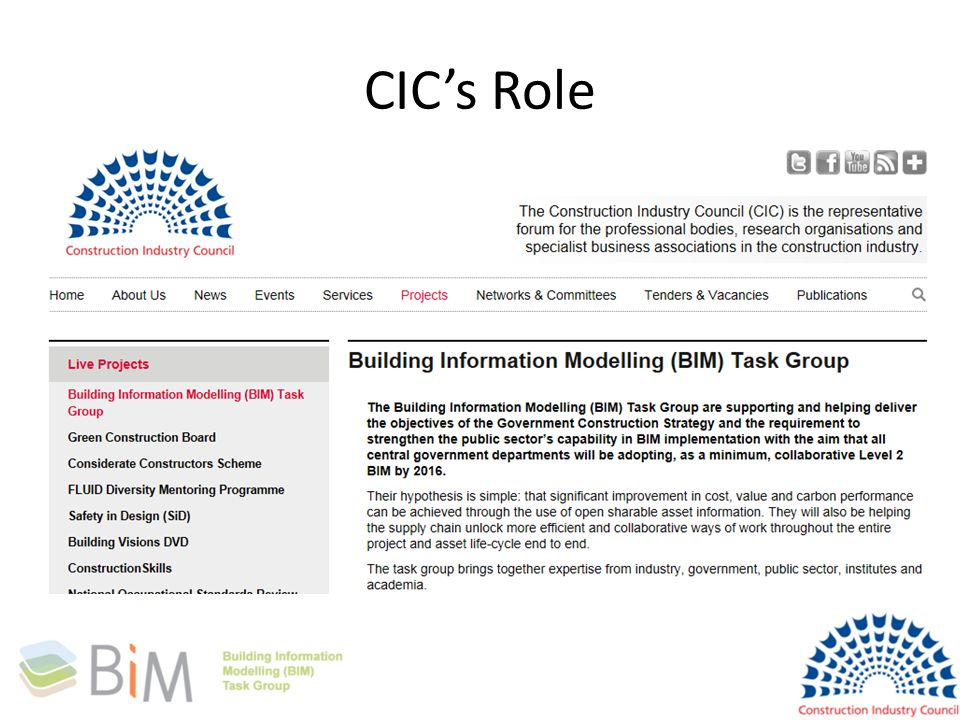 CIC's Role