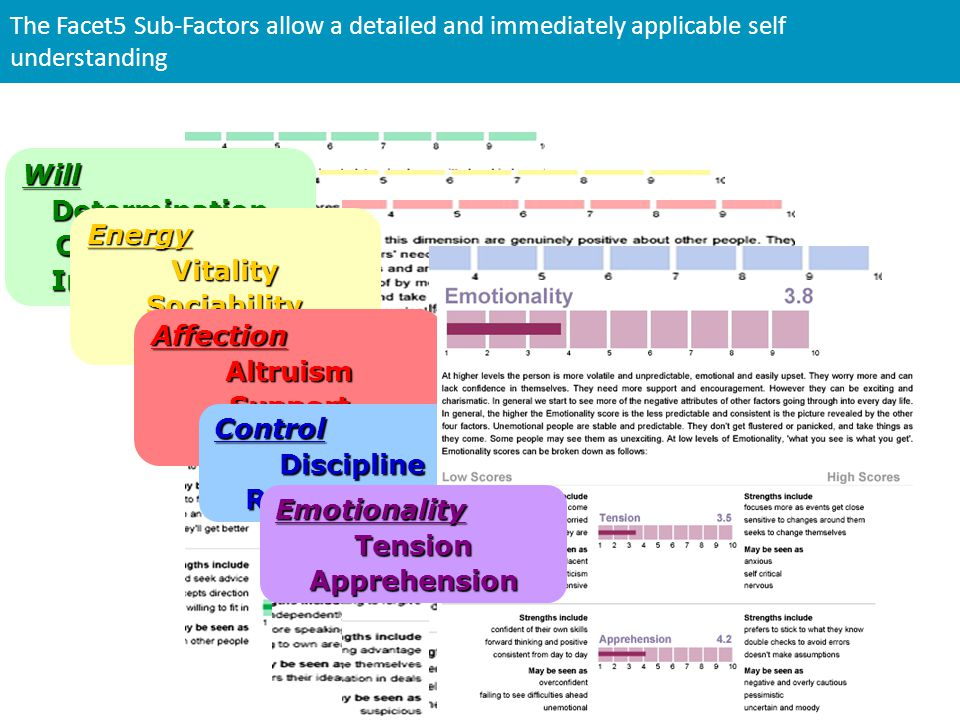 The Facet5 Sub-Factors allow a detailed and immediately applicable self understanding