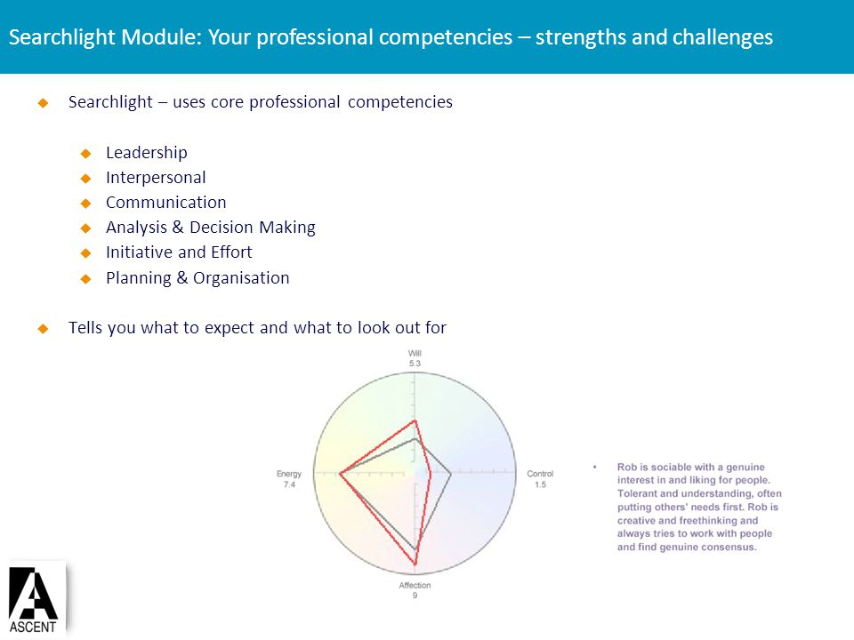 Searchlight Module: Your professional competencies – strengths and challenges