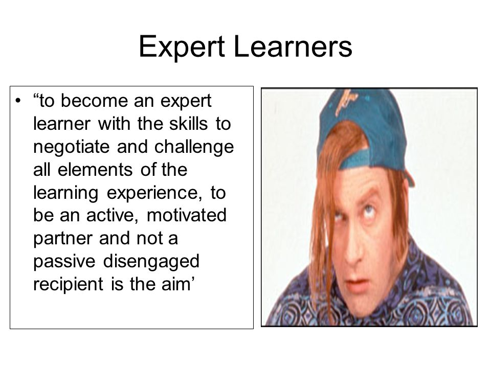 Expert Learners