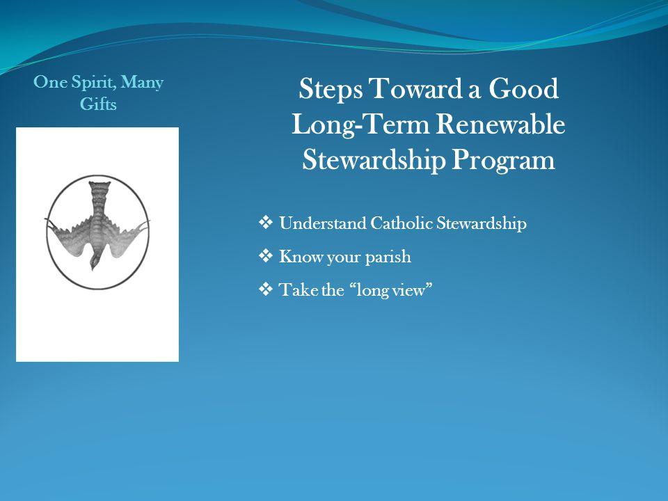 Long-Term Renewable Stewardship Program