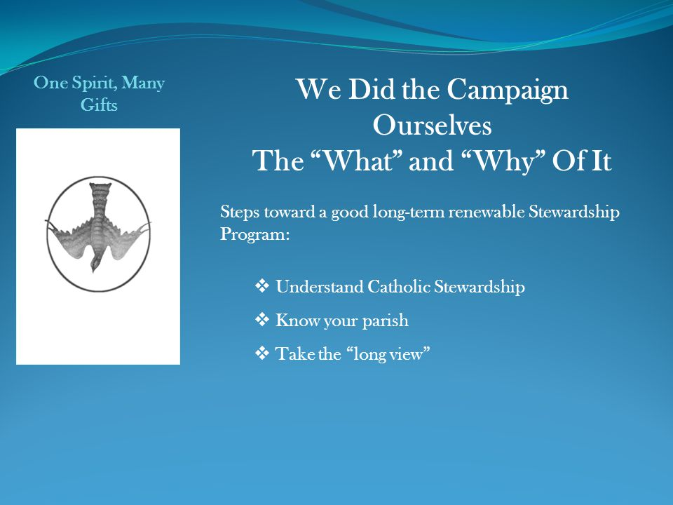 We Did the Campaign Ourselves The What and Why Of It