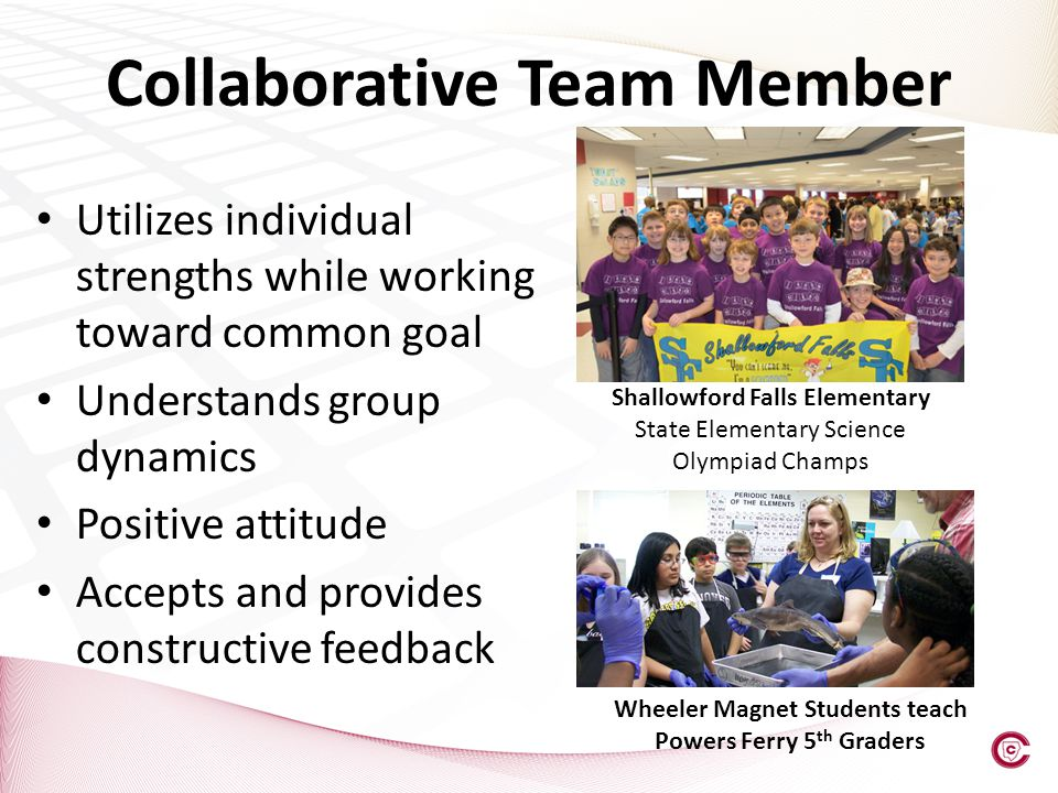 Collaborative Team Member